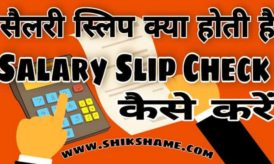 Salary Slip Check कैसे करें? Salary Slip Format pdf / Importance & Components